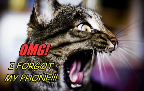 I FORGOT MY PHONE!!!
