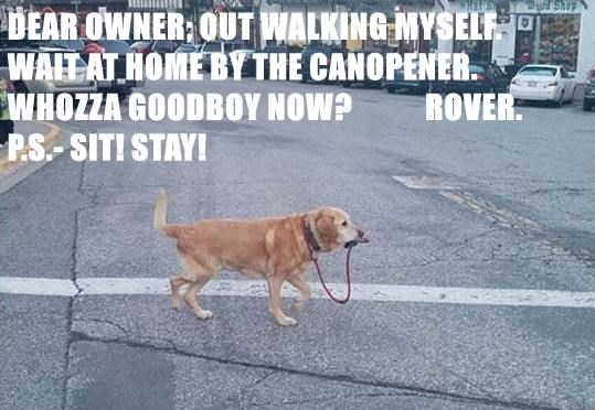 DEAR OWNER; OUT WALKING MYSELF.           WAIT AT HOME BY THE CANOPENER. WHOZZA GOODBOY NOW?            ROVER.                                            P.S.- SIT! STAY!