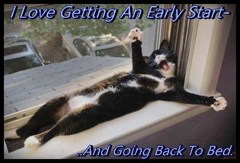 Ah.. Another Great Day - For Sleeping In!