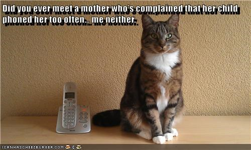 often,cat,complained,phoned,child,ever,mother,too,meet,caption