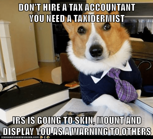 caption,dogs,corgi,IRS,taxes