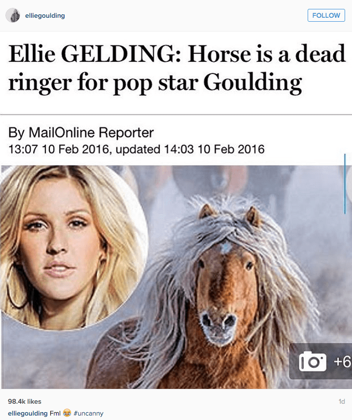 funny social media image ellie goulding accepts horse comparison in article
