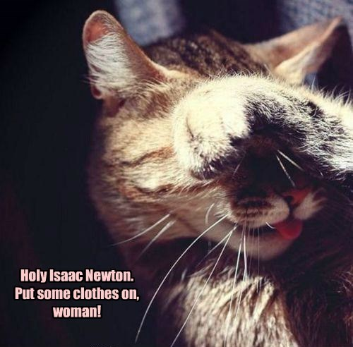 woman caption Cats