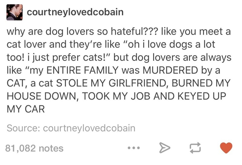Cats,cat people,dogs,tumblr,dog people
