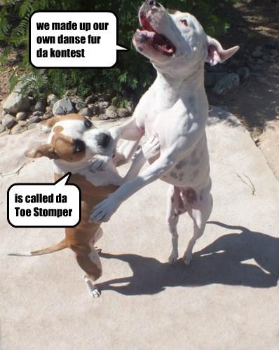 caption dogs toes danse - 8750458112