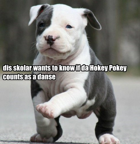 dis skolar wants to know if da Hokey Pokey counts as a danse