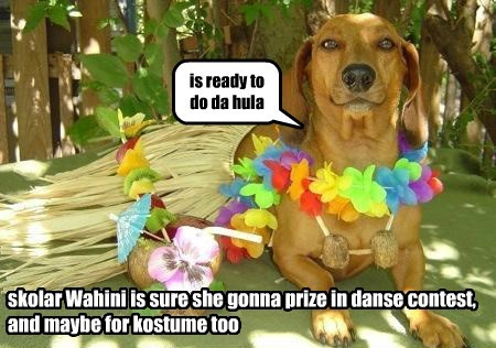 caption dogs hula danse - 8750470912
