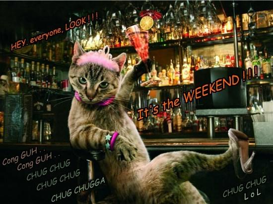weekend Cats - 8750580224