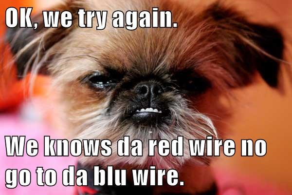 animals blue dogs red again wire try caption - 8750583040