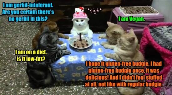 vegan caption Cats - 8750632448