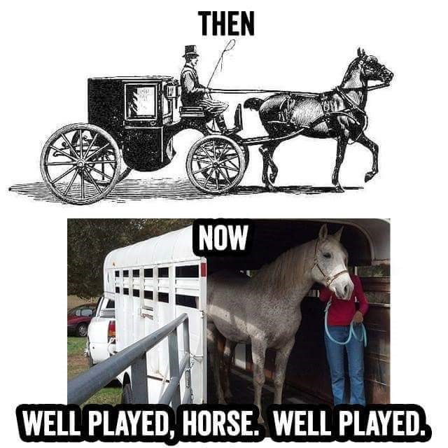 horses then and now