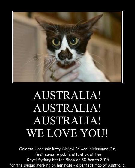 AUSTRALIA! AUSTRALIA! AUSTRALIA! WE LOVE YOU!