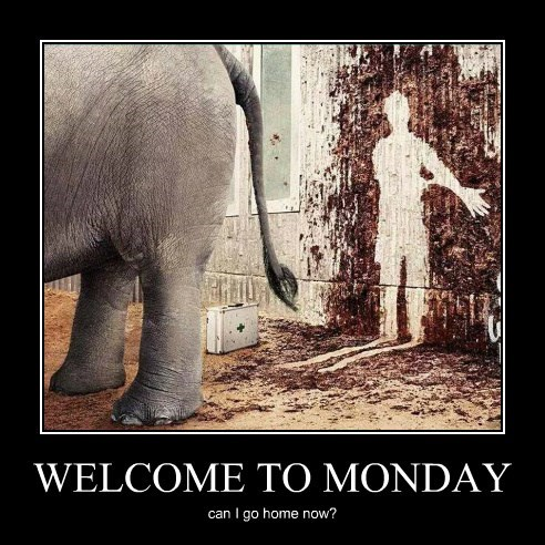 WELCOME TO MONDAY