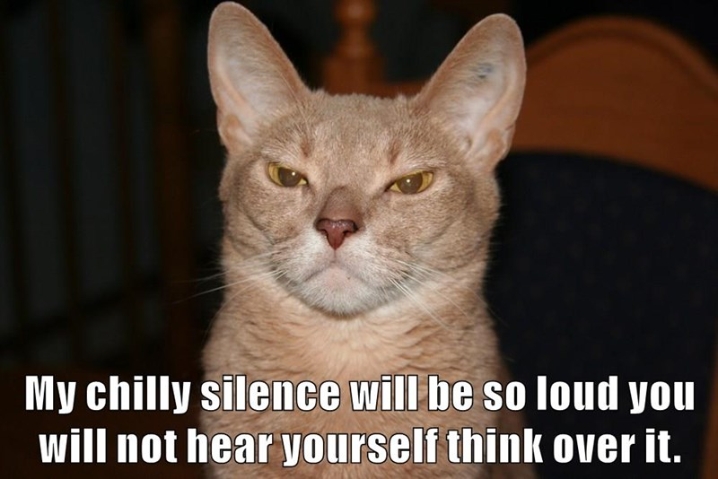 My chilly silence will be so loud you will not hear yourself think over it.