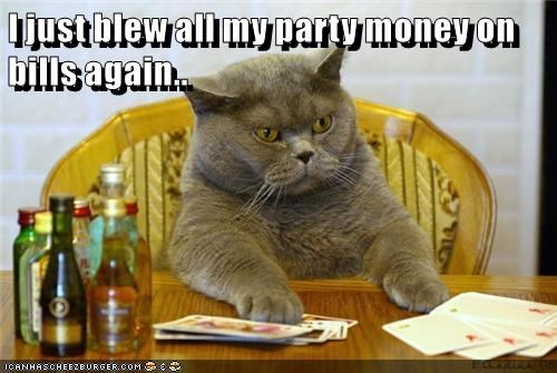 animals cat bills caption blew money Party