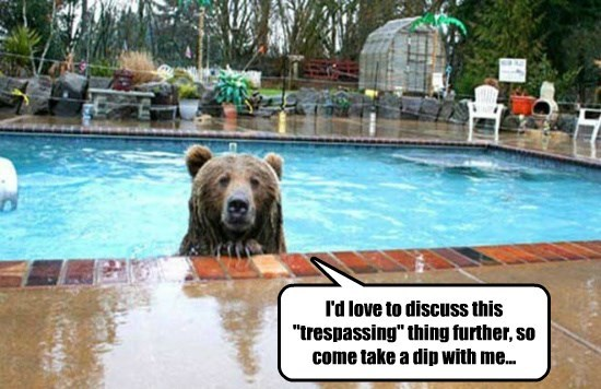 """I'd love to discuss this """"trespassing"""" thing further, so come take a dip with me..."""
