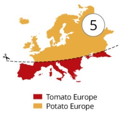 funny memes tomato vs potato europe
