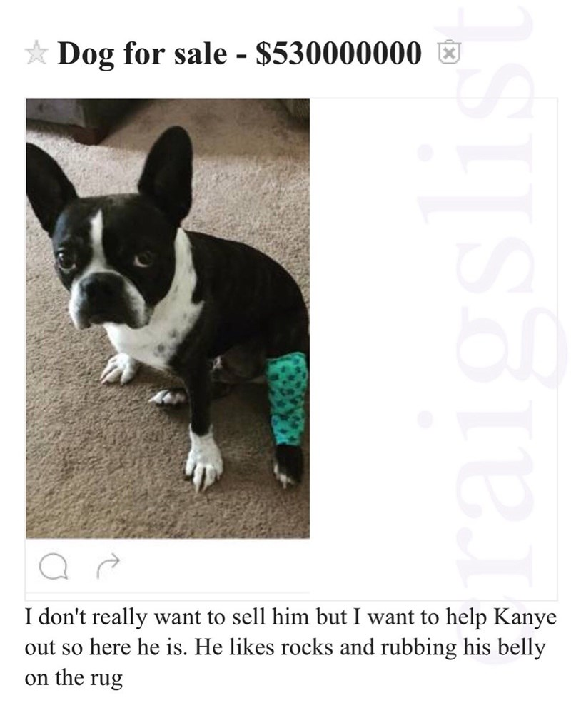 craigslist troll selling dog for kanye