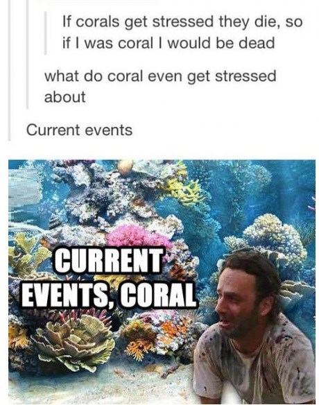 carl grimes,coral,the walking dad jokes