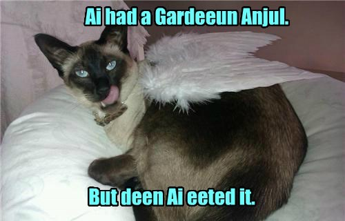 Ai had a Gardeeun Anjul. But deen Ai eeted it.