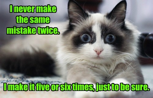 five,cat,twice,never,Sure,six,make,caption,mistake,same,times