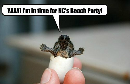 YAAY! I'm in time for NC's Beach Party!