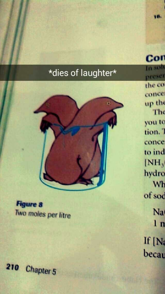 Chemistry book for the win