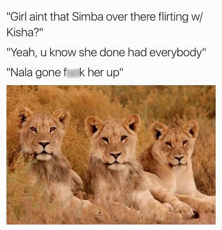 "Wildlife - ""Girl aint that Simba over there flirting w/ Kisha?"" ""Yeah, u know she done had everybody"" ""Nala gone f k her up"""