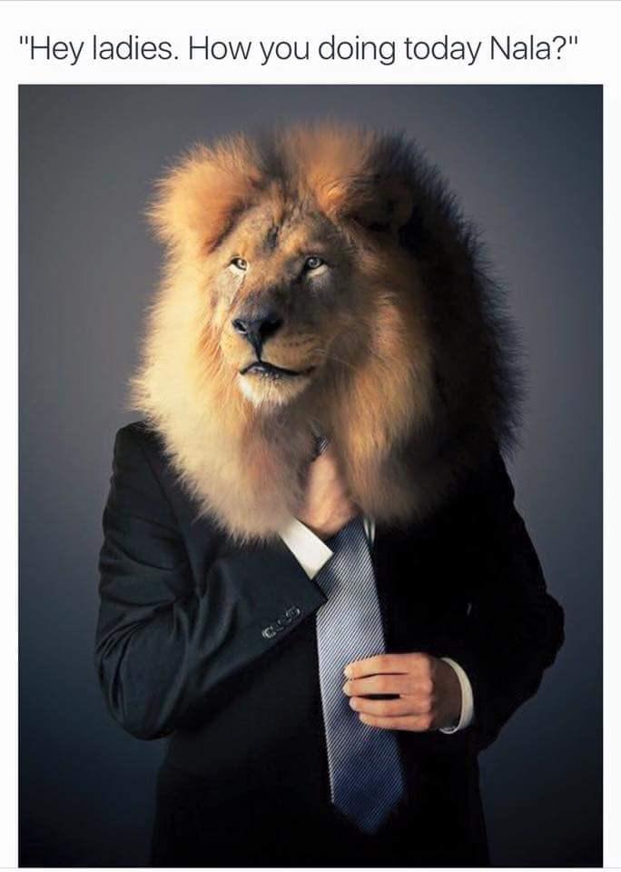 "Lion - ""Hey ladies. How you doing today Nala?"""