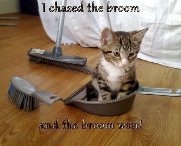 I chased the broom and the broom won!