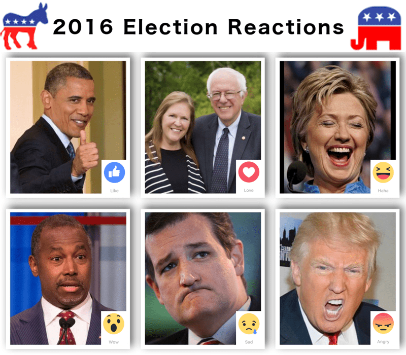facebook,politics