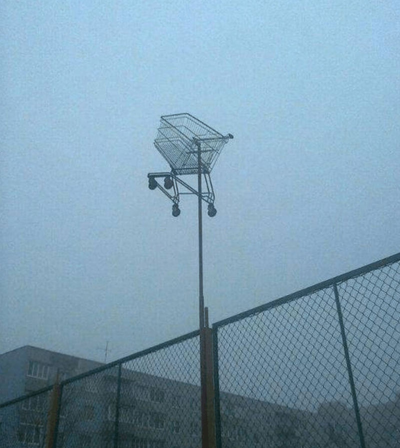 IRL,shopping cart