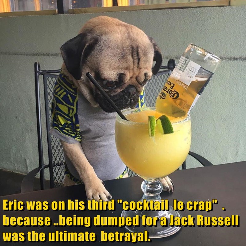 "Eric was on his third ""cocktail le crap"" . because ..being dumped for a Jack Russell was the ultimate betrayal."