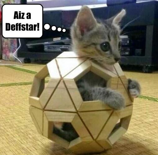 star wars caption Cats - 8754316032