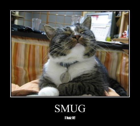 caption smug Cats - 8754324736