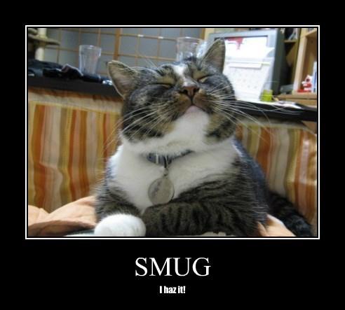 caption smug Cats - 8754324736