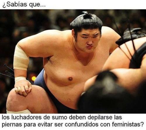 luchador de sumo
