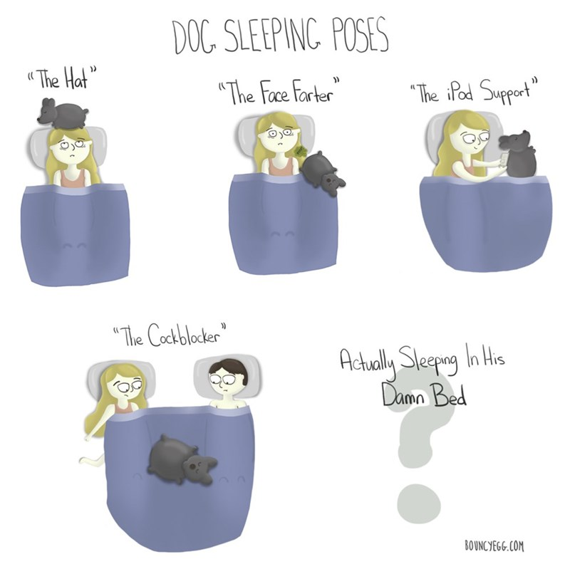 dogs sleeping web comics It's Best to Just Let Sleeping Dogs Lie