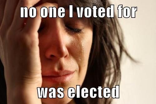 voting,politics
