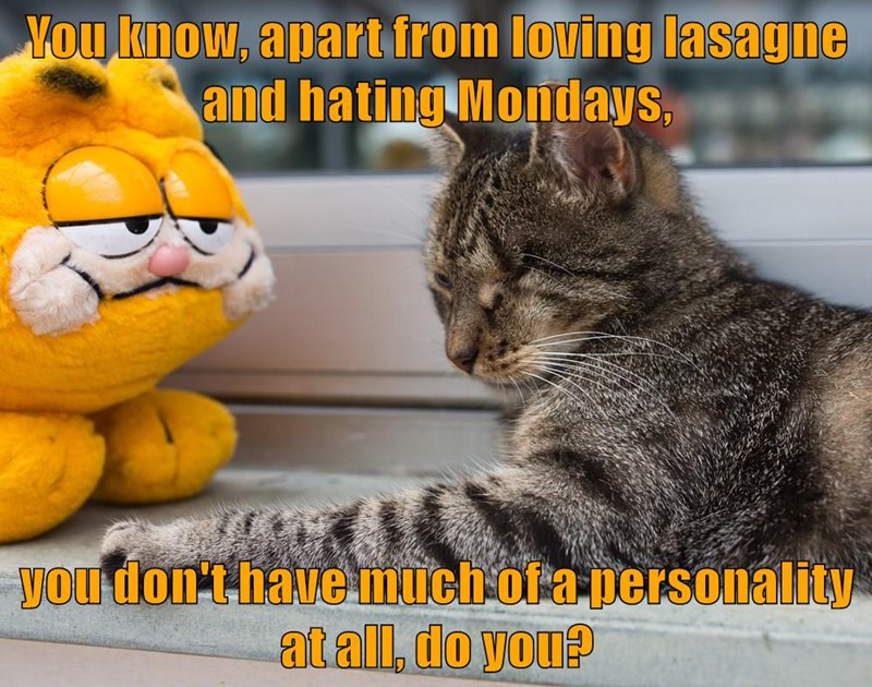 You know, apart from loving lasagne and hating Mondays,  you don't have much of a personality at all, do you?