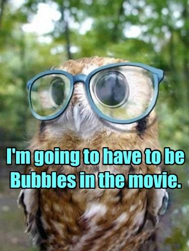 Trailor Park Owls