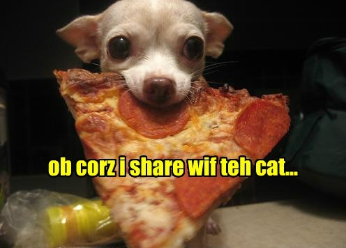 ob corz i share wif teh cat...