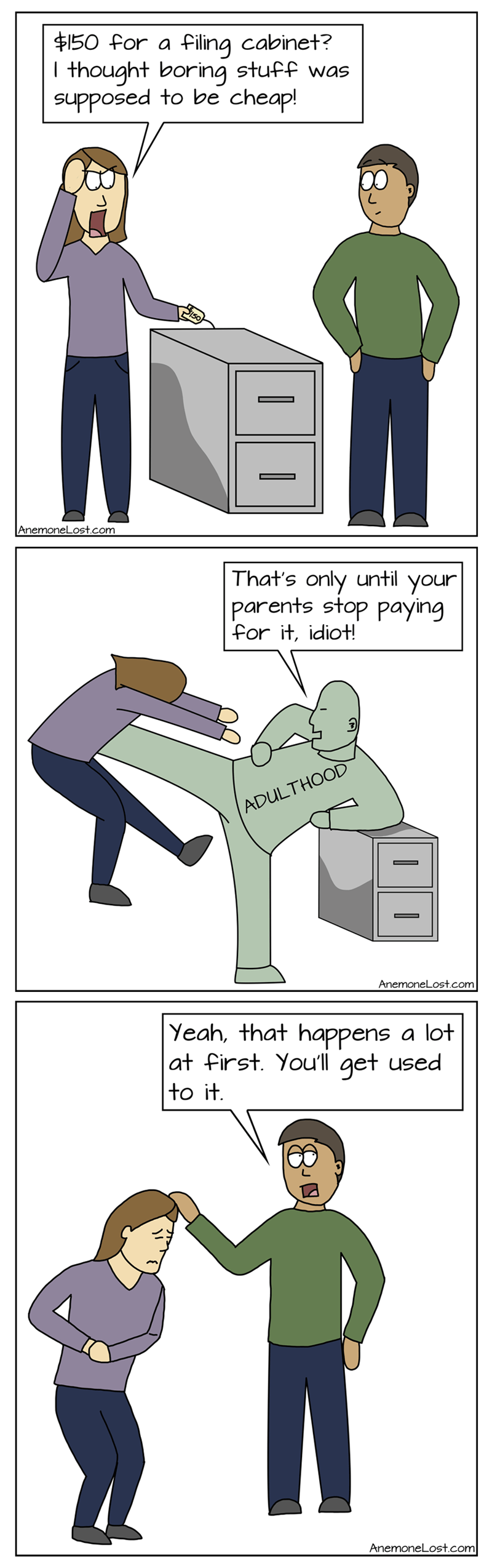adulthood money web comics - 8755040256