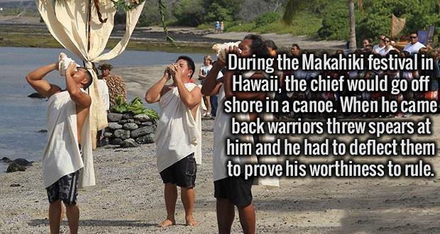 Hawaii politics - 8755076096