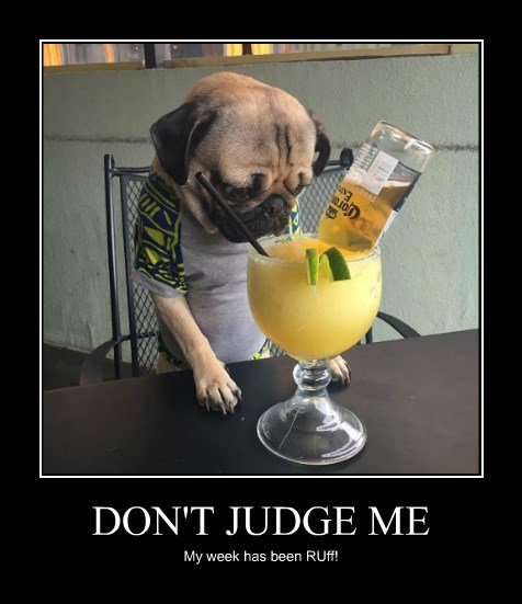 Image result for don't judge me meme""