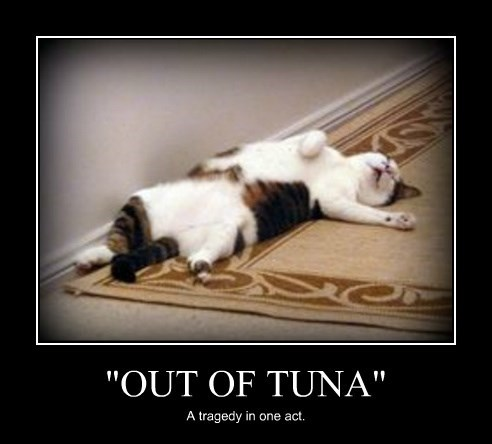 """OUT OF TUNA"""