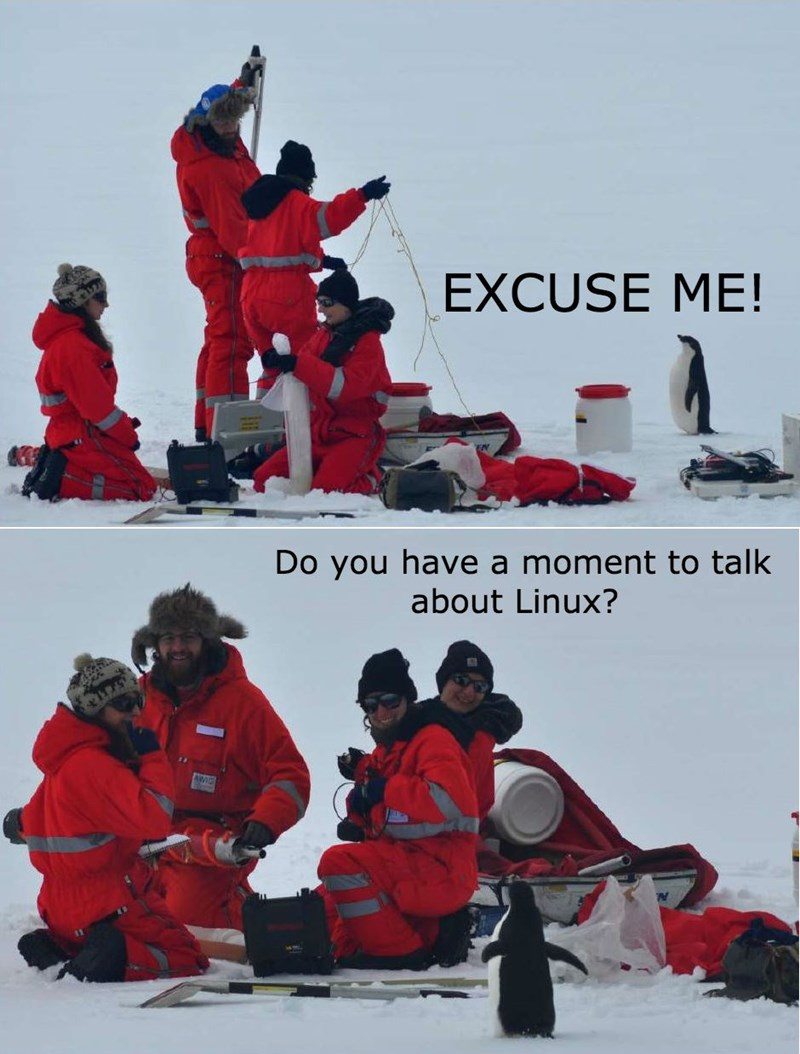 penguins linux