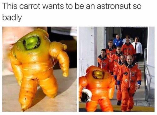 carrot,astronauts
