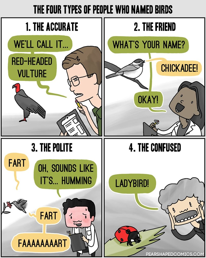web comics science birds Naming Conventions Had to Come From Somewhere