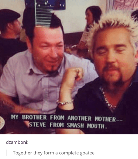 Guy Fieri smash mouth - 8755873536
